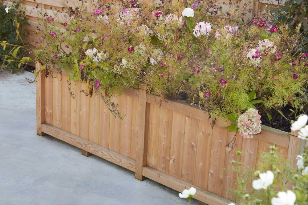 Thornhill extra long softwood planter